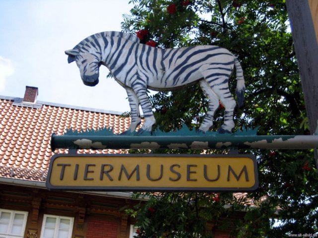 Tiermuseum Alfeld